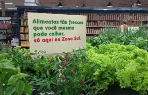 Zona Sul - Hortinha Fresca2__